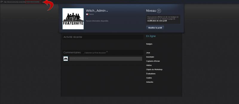 Postuler à la Whitelist Steam110