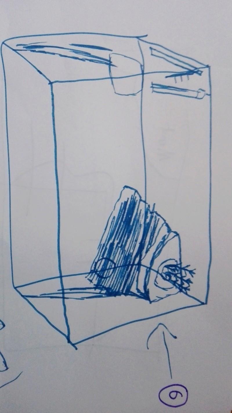 Rénovation bac de 60l Img_2012
