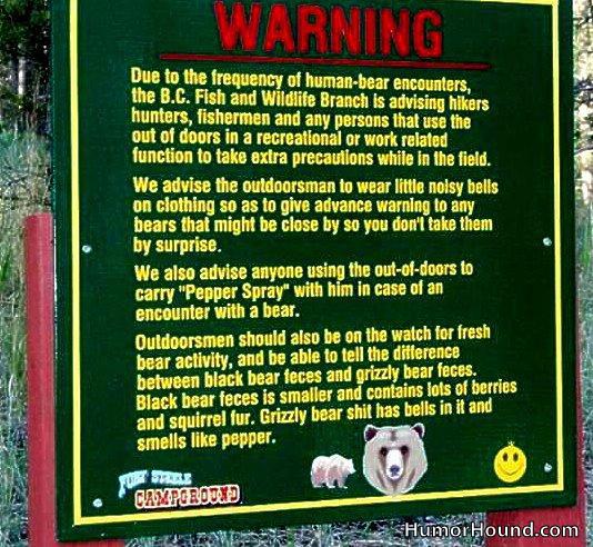 Nacionalni park YELOWSTONE Bear-w10