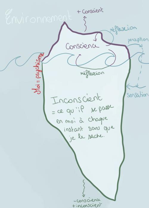 Introduction du cours sur la conscience et l'inconscient. Consci13