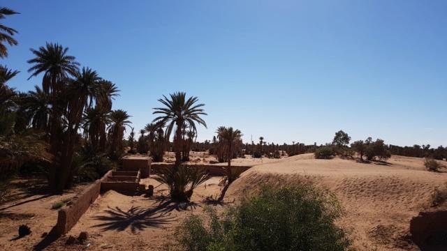 [Maroc Camp/Dernières nouvelles] carrefour des nomades , Ouled Driss  20190125