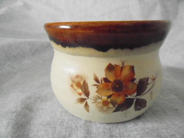 Bowls, bowls, bowls Dsc05333