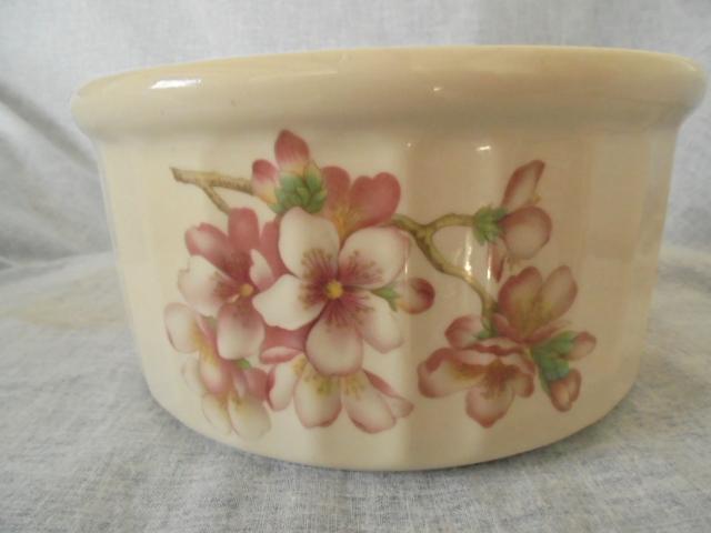 Bowls, bowls, bowls Dsc05539