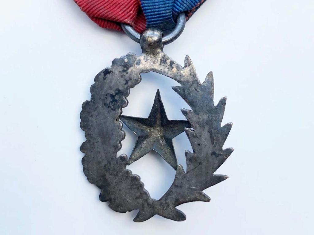 Médaille Palmes et étoiles ? Img_8112