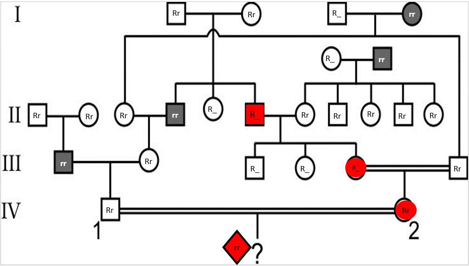 Desafio de genética! Captur76