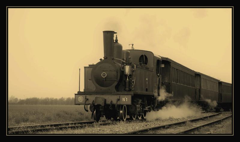 Le train-train en baie de Somme Dsc_0019