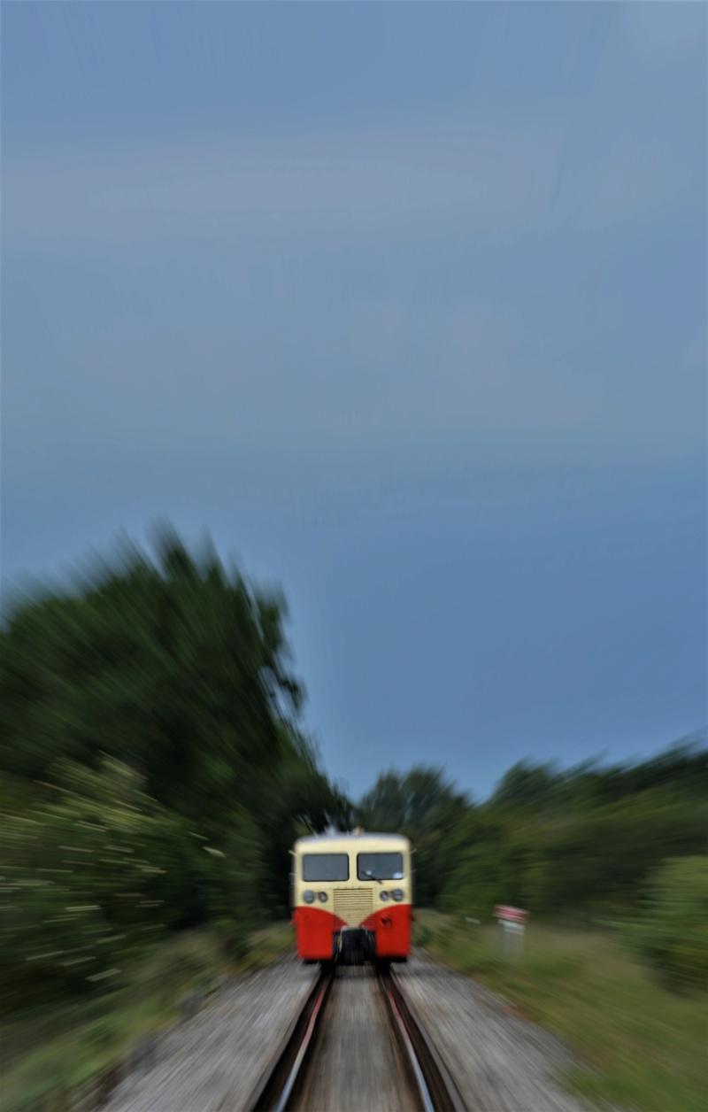 Le train-train en baie de Somme Dsc_0220