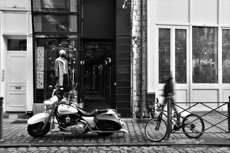 Le vieux Lille et le musée des beaux arts Dsc_1910