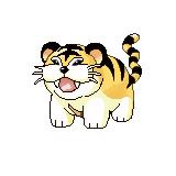 Pokemon Destiny Nekodo10