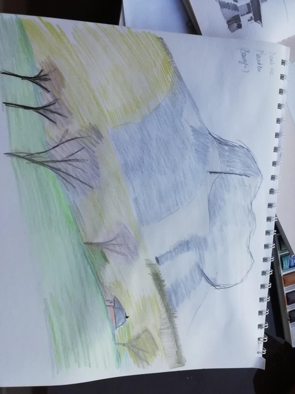 Mes dessins et autres...  Img_2085