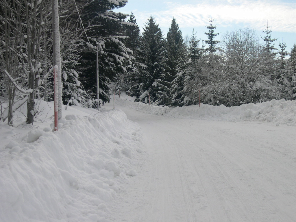 Dans les Alpes avec Amandine Route_10