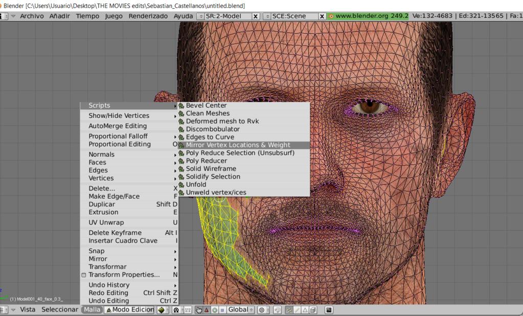 Problemas con script de BLENDER para reflejar selección  (mirror vertex location & weight) Screen43