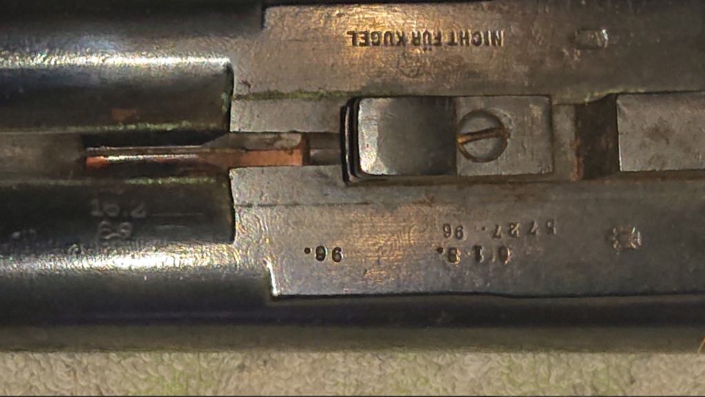 Fusil autrichien  Dsc_0113