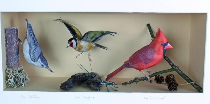 Unser Vogelpark Kardin10
