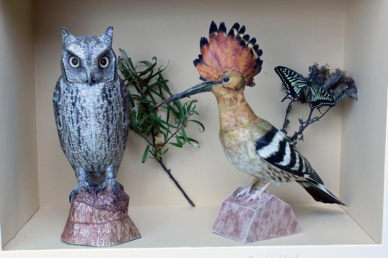 Unser Vogelpark Wiedeh10