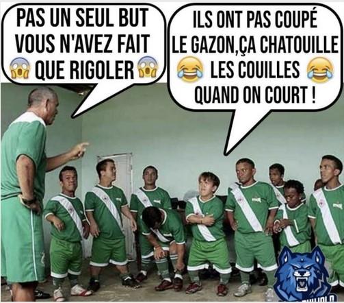 Humour et autres co..eries - Page 10 Chatou10