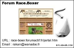 Forum Race.Boxer (1561 membres) Visit110