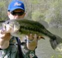 vos plus belles photos de poissons 2006 Bb5311