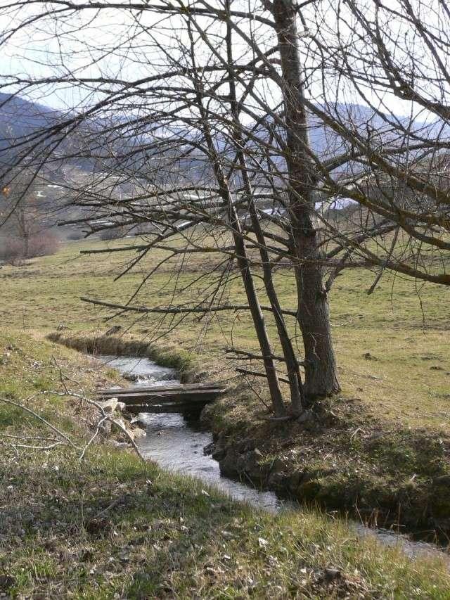 Petit ruisseau d'Ariège Photo_13
