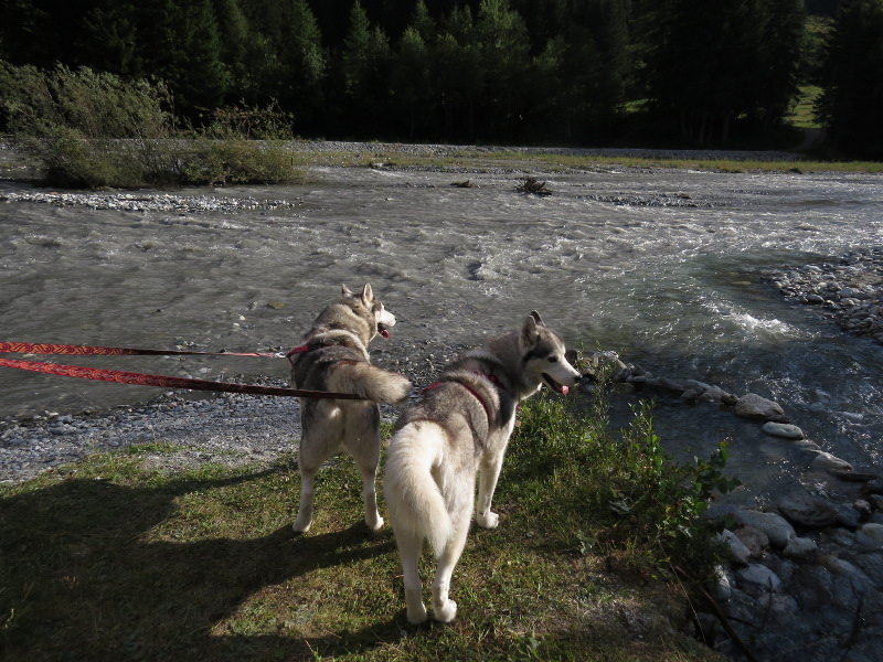 Falco et Fiona en Savoie 09_fio12