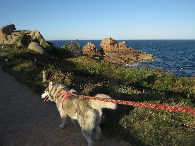 Falco et Fiona en Bretagne 26_fio10