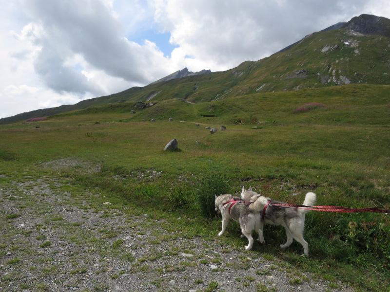 Falco et Fiona en Savoie 32_fio10