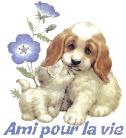 L'AMITIÉ..... 33333310