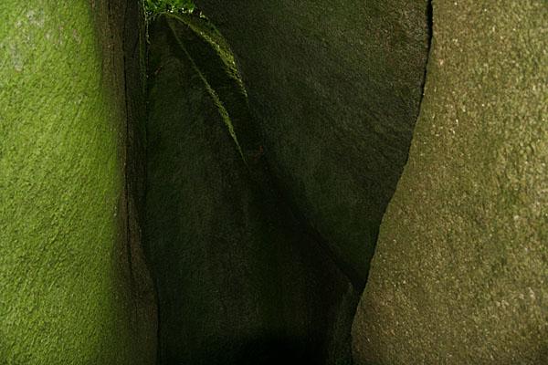 Forêt d'Huelgoat Huelga10