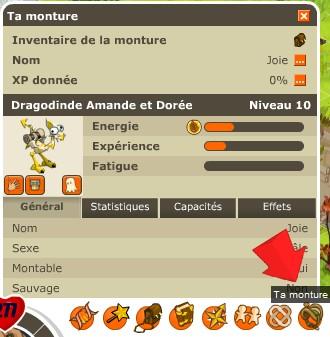 II. Les caractéristiques des dragodindes Celle10