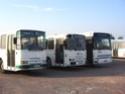 Photos des Courriers Normands et Bus Verts Img_0537