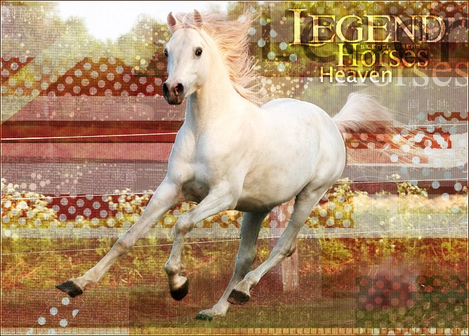 • Legend Horses Heaven •