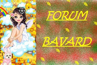 Forum Bavard