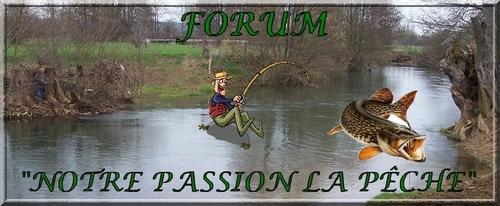 Mon blog et mon forum Logo_m14