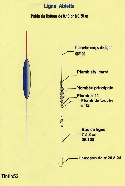 Exemple de montage de ligne et amorce pour l'ablette Montag11