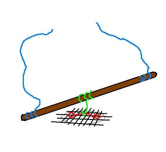 Conseils pour arrimer un arbre avec un seul trou Arrima10