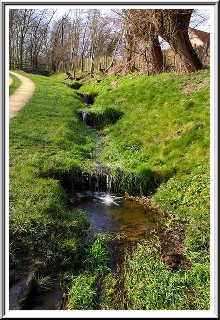 Le parc de Neerpede Anderlecht Bruxelles Sg1l1740