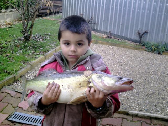 Les poissons du fils à Olivier Crim0012