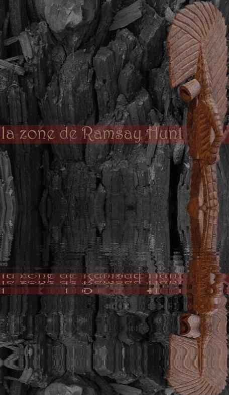 La Zone de Ramsey Hunt (...) - Page 5 Pochet10