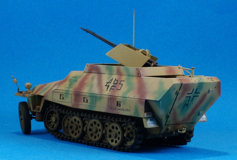 Dragon 1/35 Sdkfz 251/21 Drilling Dscn4011
