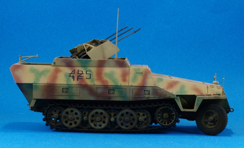 Dragon 1/35 Sdkfz 251/21 Drilling Dscn4014