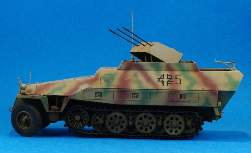 Dragon 1/35 Sdkfz 251/21 Drilling Dscn4015