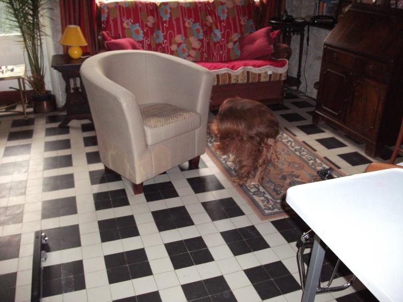Nicky, croisé épagneul, 12 ans dans son nouveau foyer... Dscf5220