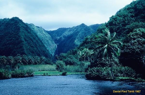 [Campagnes C.E.P.] ATOLL DE HAO - Tome 2 - Page 3 Tahiti10