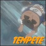 [Mission rang C] Repousser un groupe de brigand (...?) Tempet10