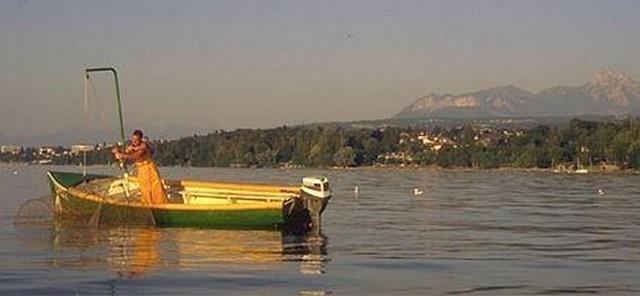 [VIE DES PORTS] Quelques bateaux de pêche (sur nos côtes Françaises) - Page 2 Pecheu10