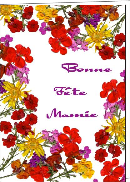 Fête des Mamies. - Page 2 8-fleu10