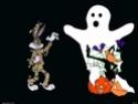 Tous ce qui est en rapport avec halloween, sauf les sorcière 70237f10