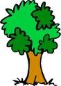 Les arbres en général - Page 3 Divers21