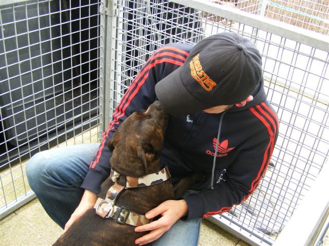 Photos de la porte ouverte à POINT DOG hier !!!! Photo_10