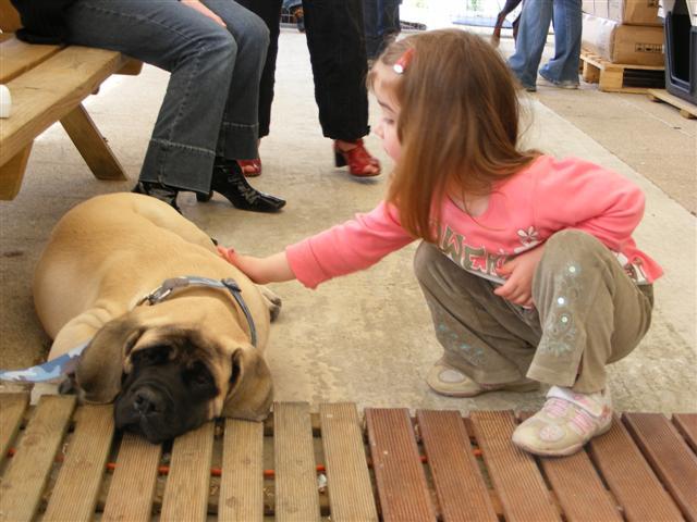 Photos de la porte ouverte à POINT DOG hier !!!! Photo_19